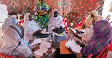 Women attend a workshop on UN SCR 1325 on Women, Peace and Security - Malha, North Darfur (Sojoud Elgarrai/UNAMID/Flickr CC BY-NC-ND 2.0)