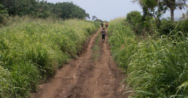 The southernmost section of the south Tanna road system, still a muddy, bumpy track (Credit: Dan McGarry)