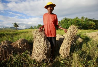 A farmer in Timor-Leste (UN/Flickr/CC BY-NC-ND 2.0)