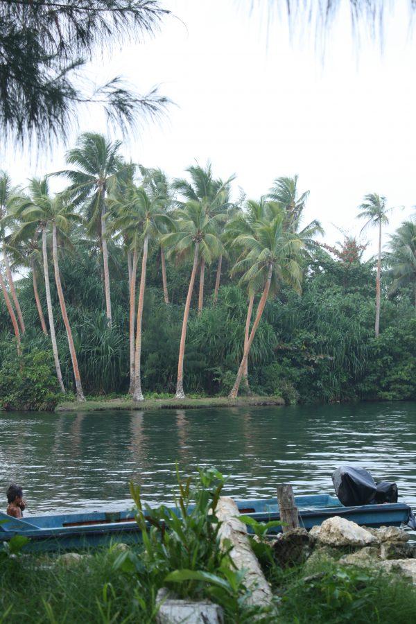 Rennell Island, Solomon Islands (Credit Luke Kiddle)