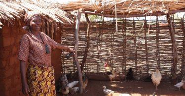 Photo credit: Ana da Felicidade Lucas (Kyeema Foundation Field Veterinarian, Mozambique)