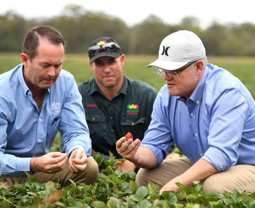 Australia's new agricultural visa - Devpolicy Blog from the