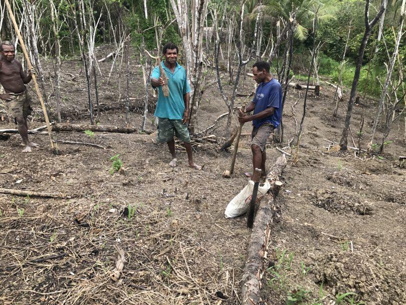 Lowland farmers in East Sepik, Papua New Guinea (Credit: Emily Schmidt/IFPRI)